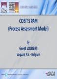 COBIT 5 PAM (Process Assessment Model) - isaca