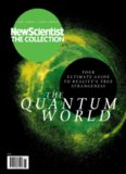 The Quantum World: Your Ultimate Guide to Reality's True Strangeness