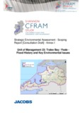 Shannon CFRAM Study SEA Scoping Report Annex I UoM23