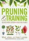 Pruning and Training: What, When, and How to Prune