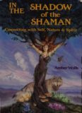In the Shadow of the Shaman (Llewellyn's New World Spirituality)